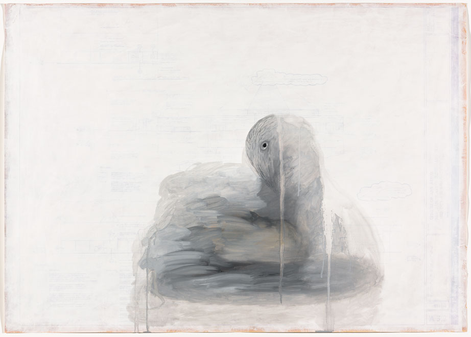 Ed Fraga, Swan