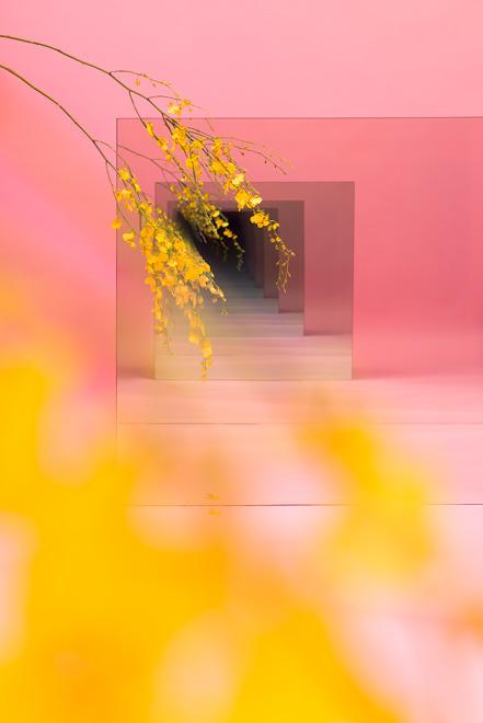 Sarah Meyohas, Pink With Yellow