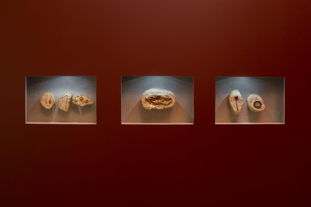 Dorota and Steve Coy, Homosapien Fossils